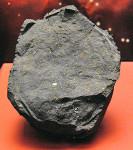 Jeden z fragmentů meteoritu Murchison v National Museum of Natural History, Washington