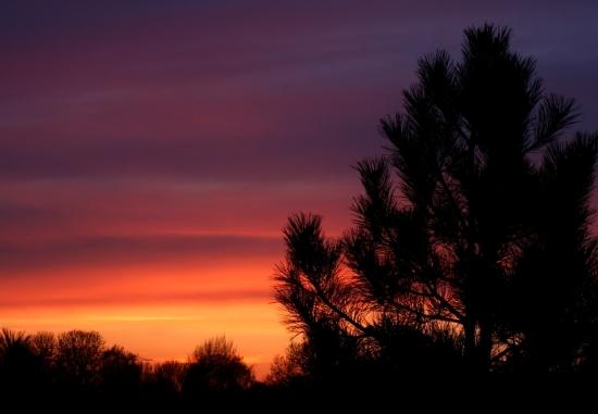 Zabarvený západ slunce v Nizozemsku. Autor: Dennis Put