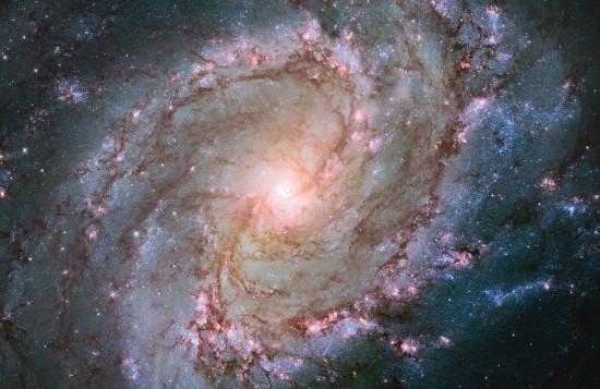 Spirální galaxie M83 v souhvězdí Hydry.
