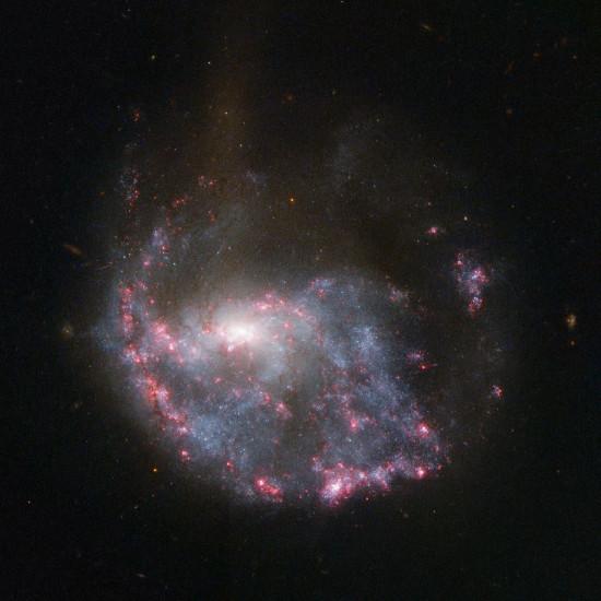 Galaxie NGC 922