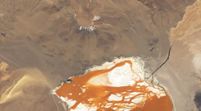 Jezero Laguna Colorada v bolivijských Andách. Jezero se nachází ve výšce 4300 metrů nad mořem, což spolu se slanou vodou zdá se nevadí řasám, které mohou za jeho zbarvení