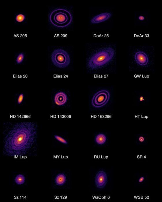 Protoplanetární disky očima radioteleskopů ALMA. Credit: ALMA (ESO/NAOJ/NRAO), S. Andrews et al.; N. Lira